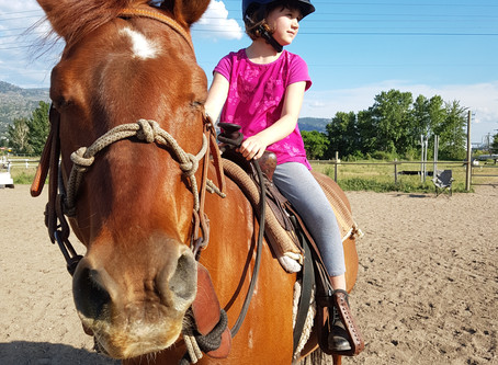 Discover Horses Spring Session Starts Soon!