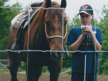 Equine Assisted Learning and/or Therapy