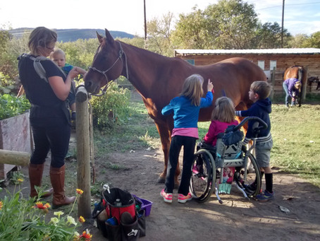 What exactly is Therapeutic Riding?