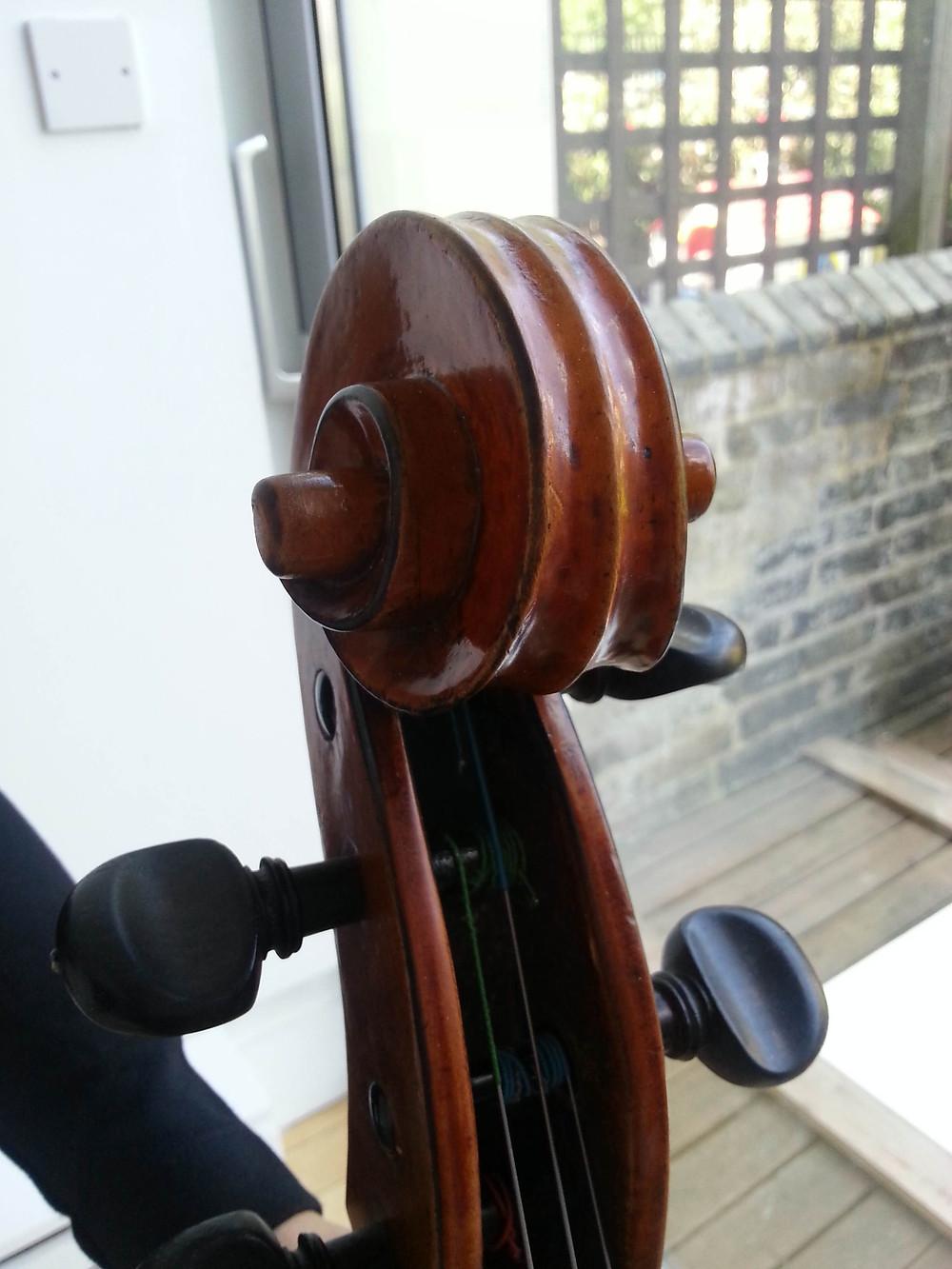 'Simpson' Guadagnini cello scroll