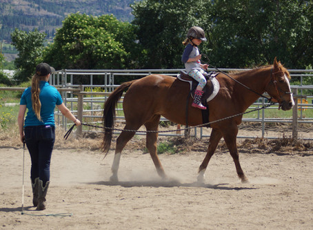 Discover Horses Registration Now Open!