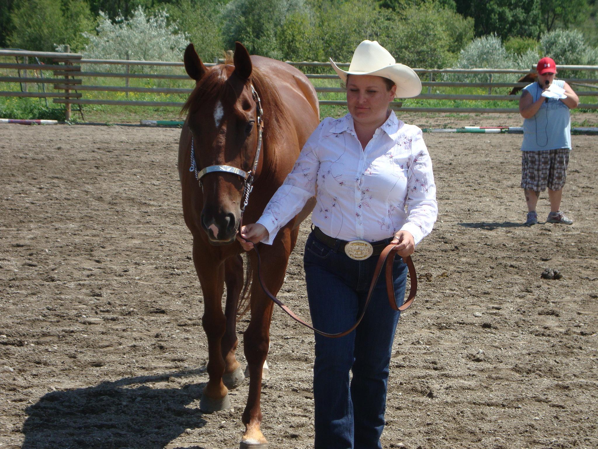 Horse training 042