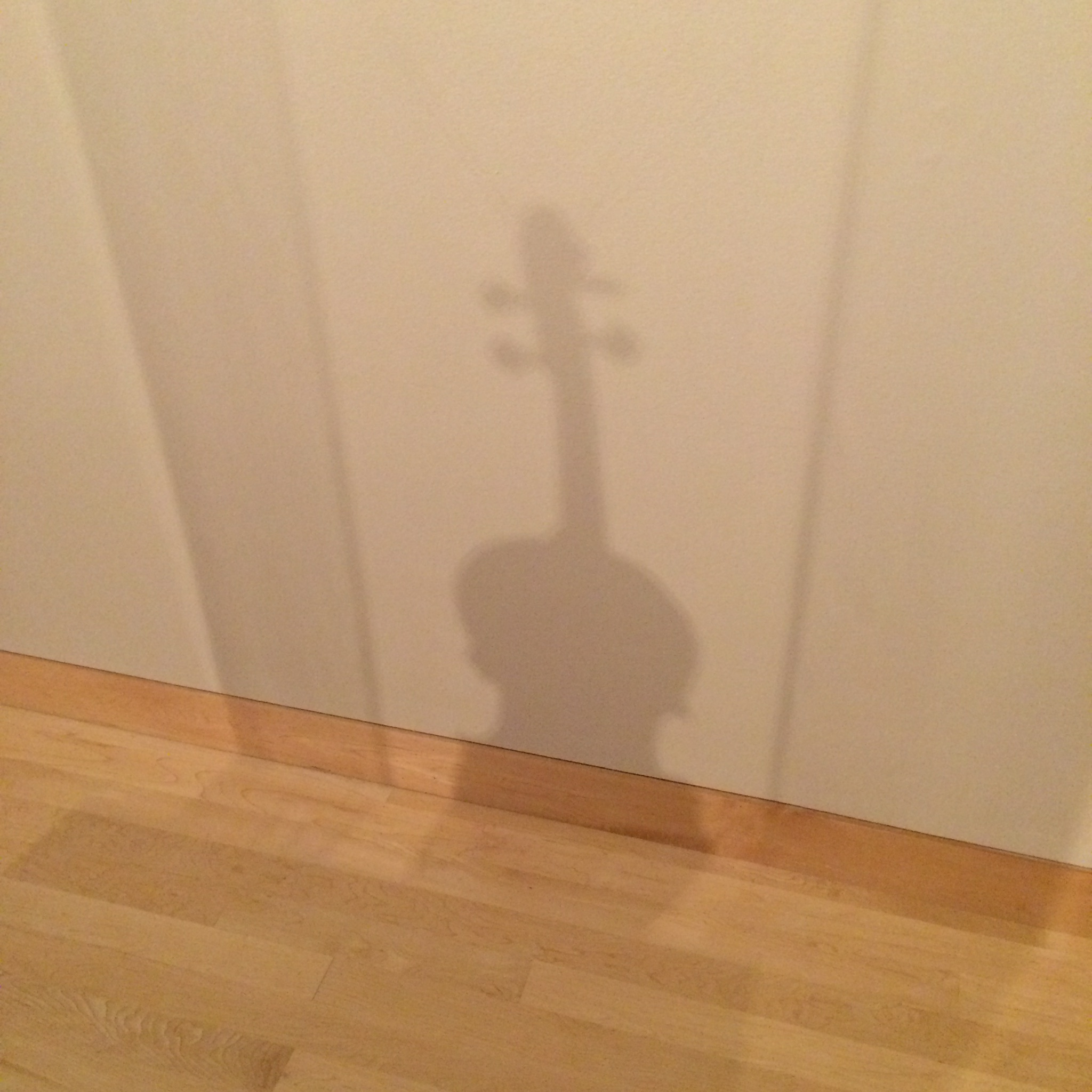 In the shadow of Stradivari