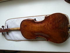 A Storioni violin that still thinks it's a viola