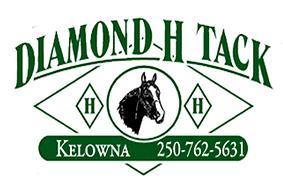 diamondhtack-logo.png
