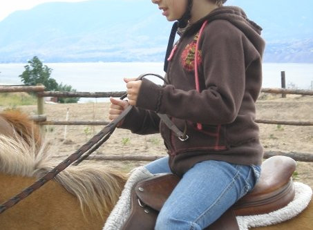 What is Hippotherapy?