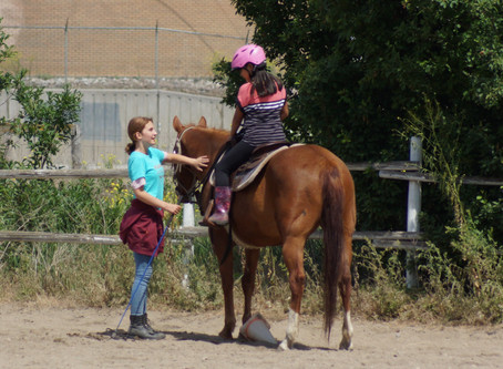 INCLUSIVE CAMPS & DAY PROGRAMS