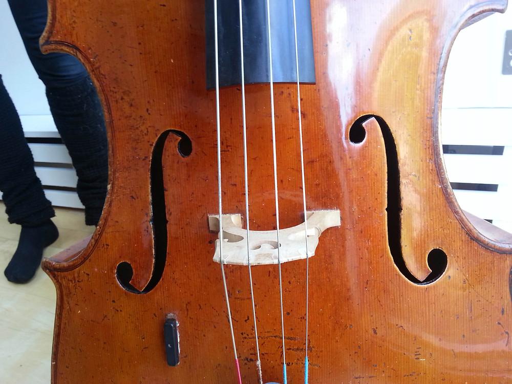 'Simpson' Guadagnini cello front