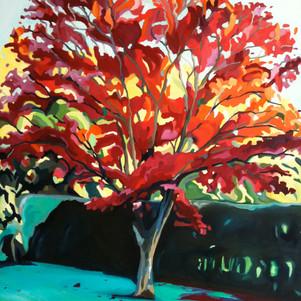 Alfold in Autumn