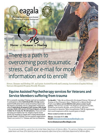 Equine Assisted Psychotherapy Services for Veterans.jpg