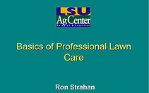 Lawn Care - Ron Strahan.JPG