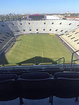 The Home of the LSU Tigers