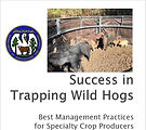 Success in Trapping Wild Hogs.JPG