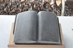 Darwinboek