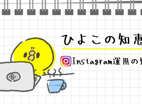 【NEWS】❝ひよこの知恵袋🐥Instagramの知恵❞を立ち上げました!