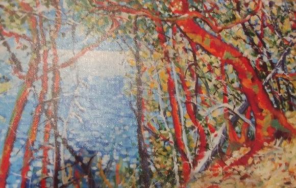 12#. Salt Spring canvas print 12 x 8