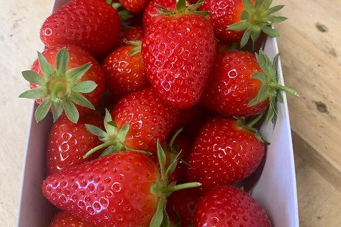 Erdbeeren, 500gr Schale