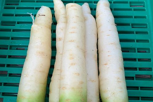 Karotten weiss