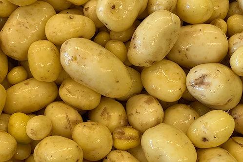 Frühkartoffeln Agata gew.