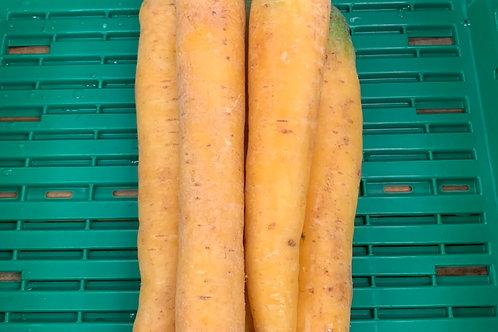 Karotten gelb, Pfälzer
