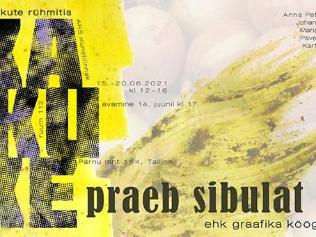 "Exhibition ""Kakuke frying onions aka the kitchen side of graphic art"""