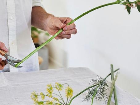 5 วิธีง่ายๆ ที่จะทำให้ดอกไม้อยู่ได้นานขึ้น