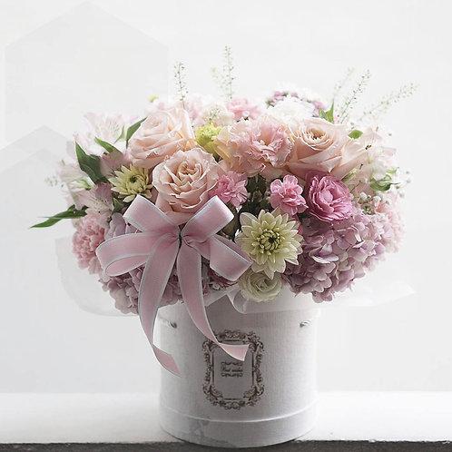 Wonderful Wish FB-04