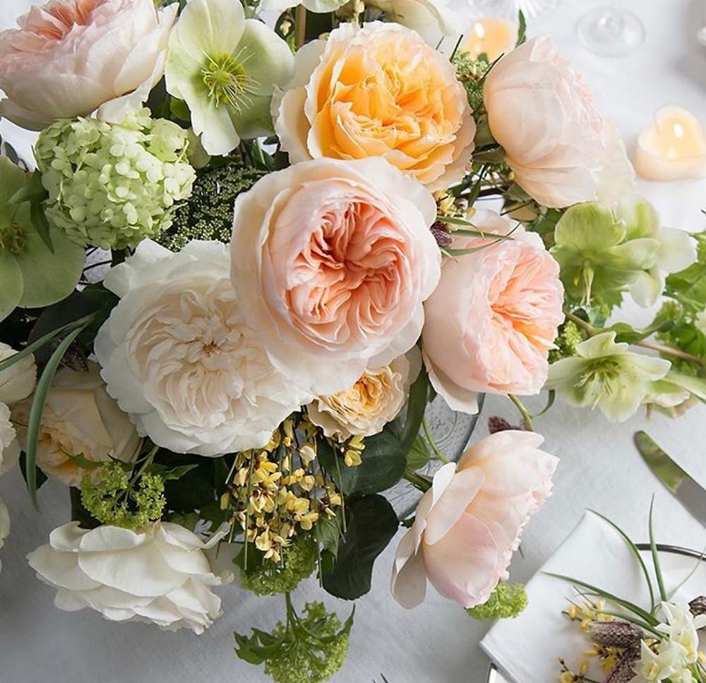 ช่อดอกไม้ ช่อดอกกุหลาบ ช่อดอกกุหลาบอังกฤษ