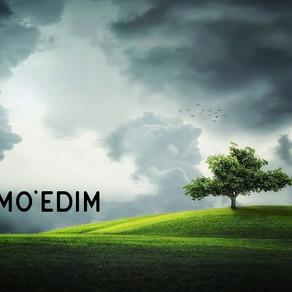 The Mo'edim