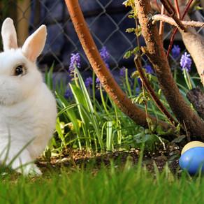 Pagan Holidays, Easter