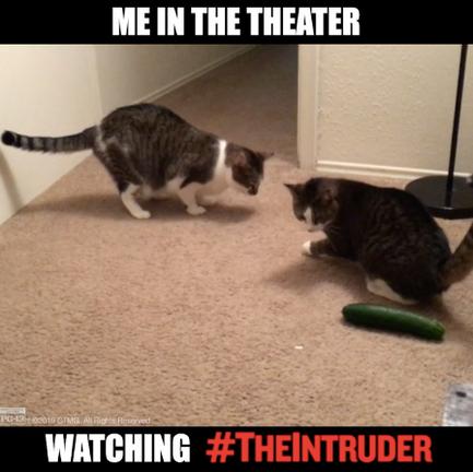 """Cucumber Theaters"" - The Intruder"