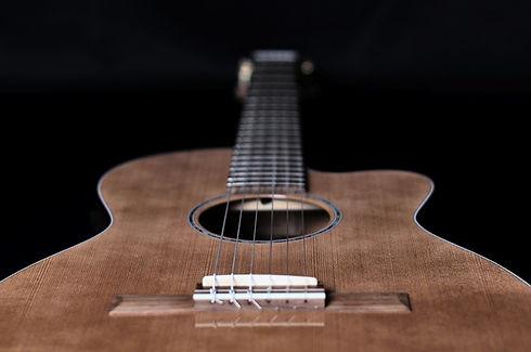 guitar-1854881_960_720.jpg