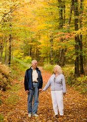 Senior citizen couple on a trail with autumn colors in Bovina New York