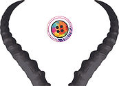 Chetna Logo no Text.jpg