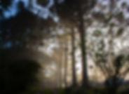 2_ambientes_paisagem6.jpg