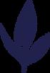 Logo thé à boire, Yerba maté, infusion à froid, compagnie québécoise
