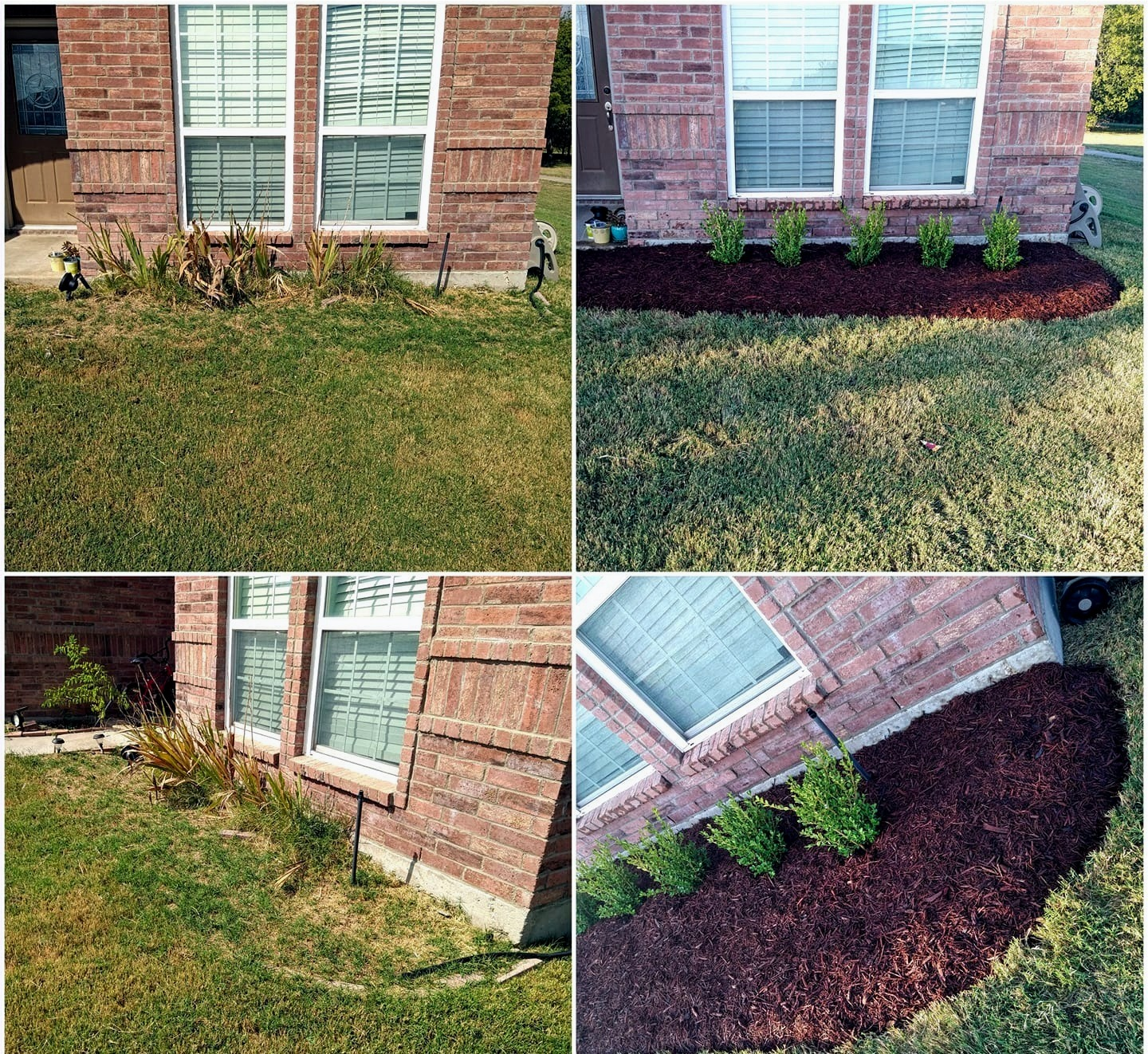 Flowerbed Install - Mulch & Boxwood Shrubs