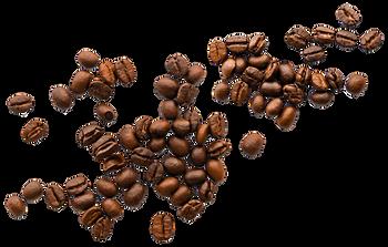 gfy-kahve.png