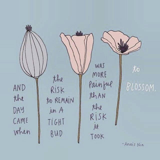 And the day came when the risk to remain in a tight bud was more painful than the risk it took to blossom - Anaïs Nin