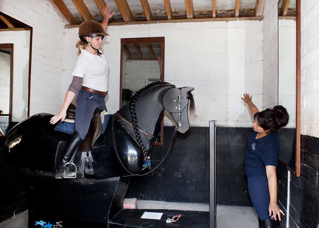 mechanical-horse.jpg