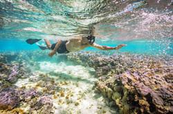 snorkelingO.jpg