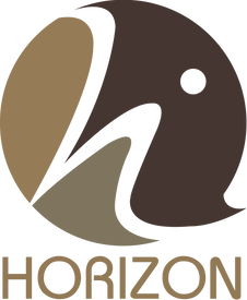 20200523 HORIZON OL.png