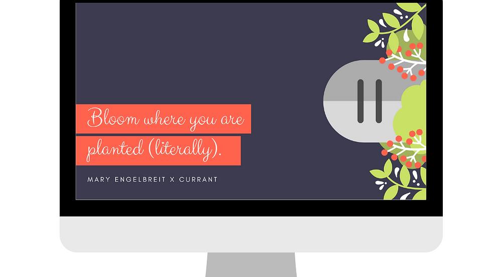 """Bloom"" -  Desktop Wallpaper for Donations"