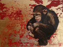 L'espiègle (jeune chimpanzé)