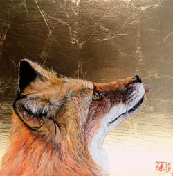Fox lingua trahens