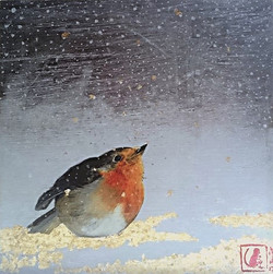 Rouge-gorge sous la neige