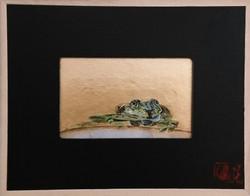 """La grenouille"""