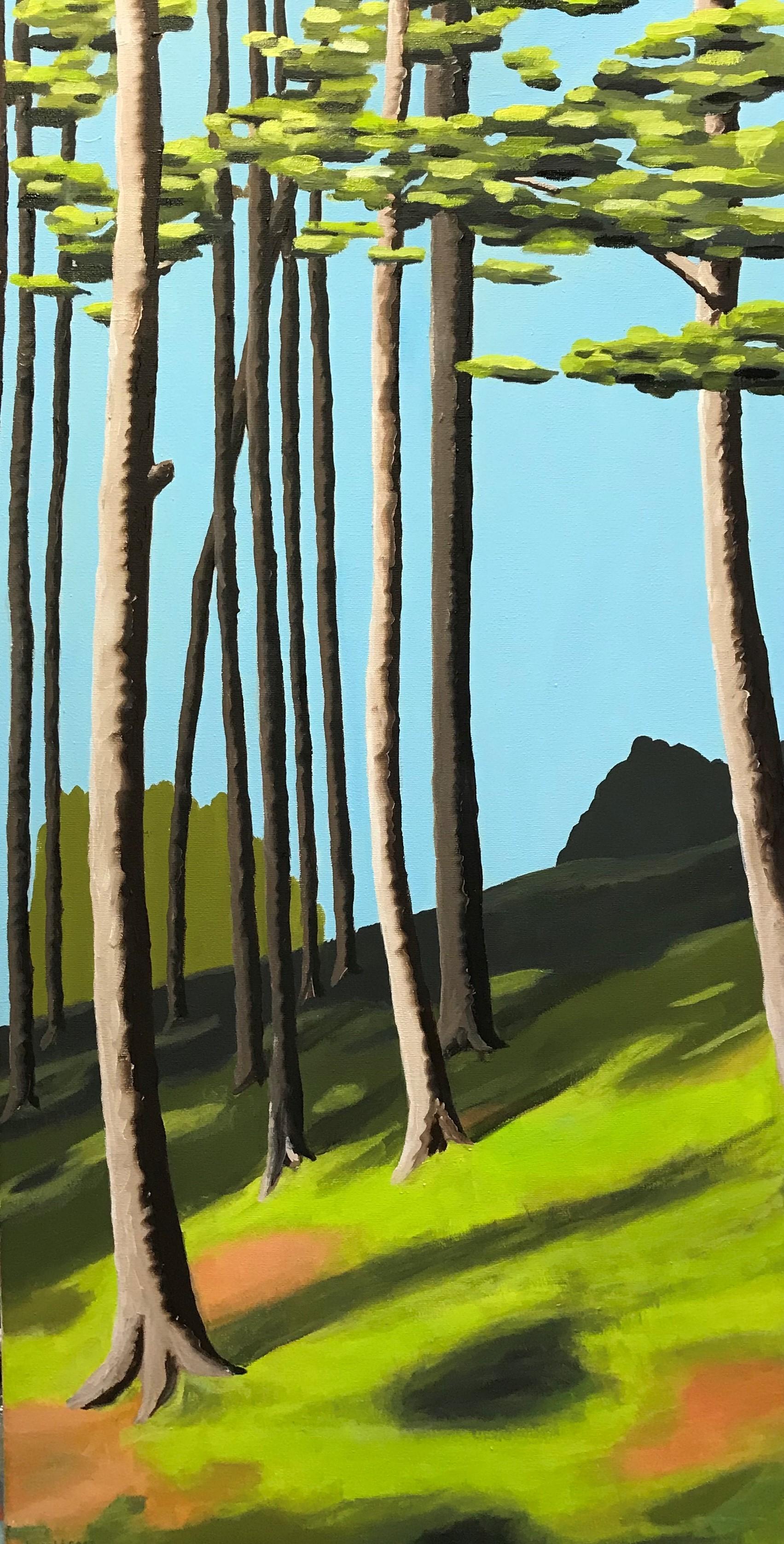 Schottischer Wald 1