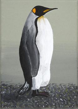 Pinguintriologie 1.1 (Königspinguin)