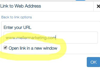 Open link in a new window